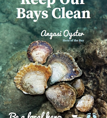 CARING FOR OUR BAYS